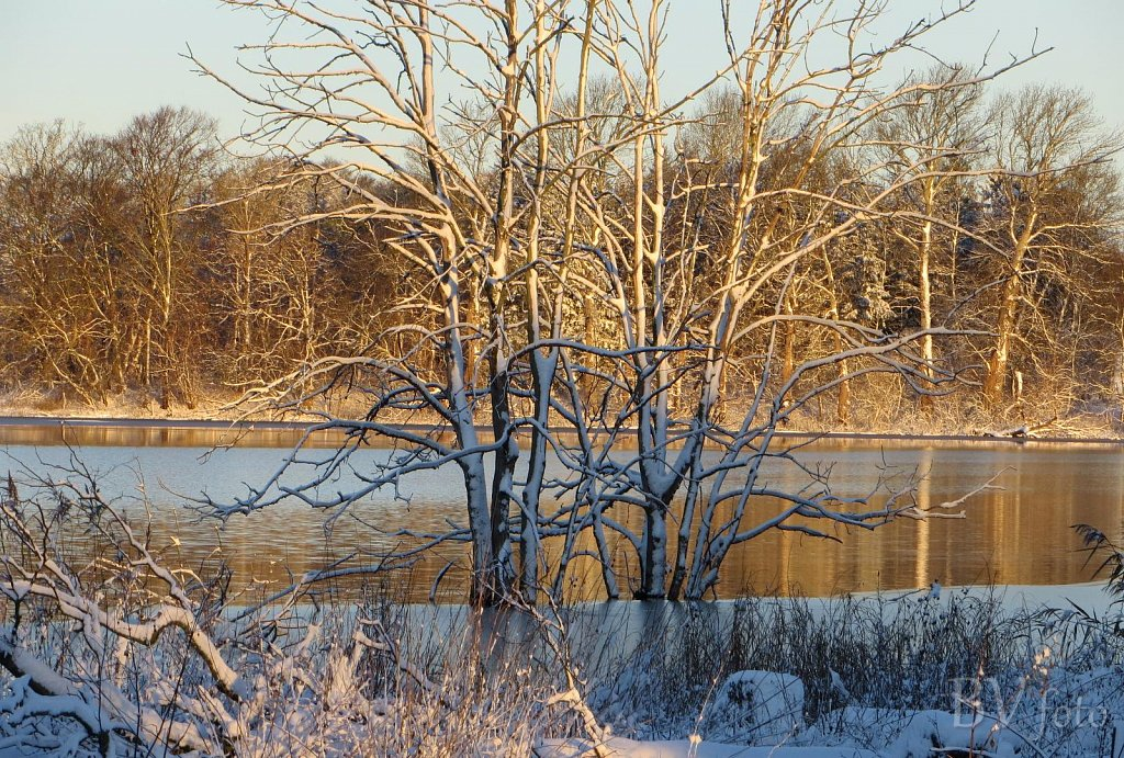 Nysted-Vinter-3.jpg