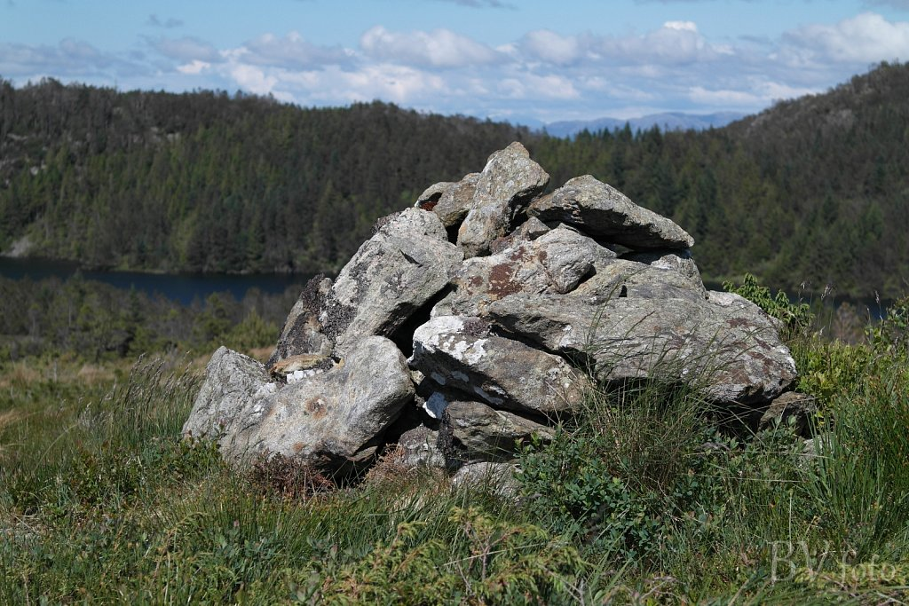 Steinsfjellet